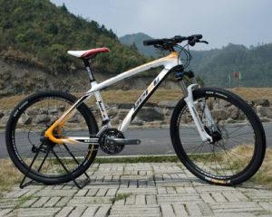 "29"" Carbon Fiber BEIOU Hardtail MTB"